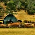 Álmom egy tanya... - Tényleg?!