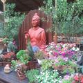 Buddhák, leanderek és muskátlik a Krúdy Gyula utcában