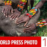 WORLD PRESS PHOTO 2015 - Értsd jobban a világodat!
