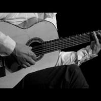 Latinos dallamok az erdőben