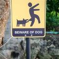 Veszélyes kutyák: egy téma, amit át kéne gondolnunk?