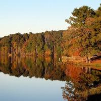 Amit épp hallgatnod kell: az ősz 58 dalban