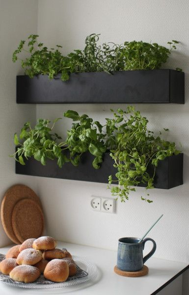 Van régi raklap, szög és némi festék a háznál? Érdemes összeütni néhány növényládát és kihasználni a falakat is!