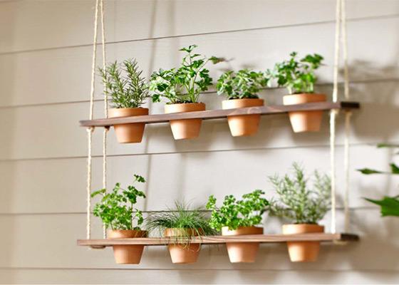 A konyhai növények és lógatott növények szerelemgyereke ez a megoldás, ami ráadásul házilag is elkészíthető.