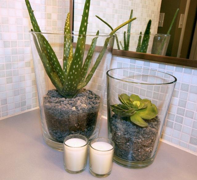 Házilag kialakítható egy-egy olcsó pozsgás és IKEA váza segítségével ez a minimalista, elegáns dísz.
