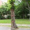 Nap képe: mindent túlélt az oszlopba belenőtt, körbeaszfaltozott, majdnem kivágott rákospalotai fa