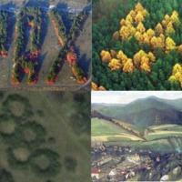 A Nagy-Magyarország alakú erdő létezik. Meg egy csomó más furcsa formájú faültetés, az egyiket Csontváry is megörökítette