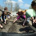 Karosszékből kertészkedhetünk szenzorokkal: jön a Pesti Borsó