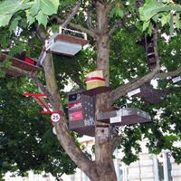 A Kétfarkú Kutya madárvárosa Miskolcon. Vannak benne utak, házak, ingatlanközvetítők, óriásplakátok és plasztikai sebész is