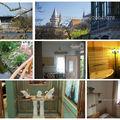 Hatalmas házat árulnak a Kis-Balaton közepén 450 millióért, alatta üvegpadlóval fedett 300 köbméteres akvárium - 7 fincsi hirdetés