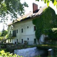 Eladó malmok Magyarországon és a tátrai szellemfürdő - ingatlansaláta