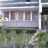 Lakótelepi gerillanénik: bájos kertek a panelházak közt