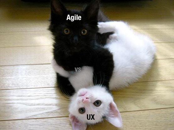 agilevsuxcats.png