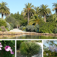 Barcelona lenyűgöző parkjai