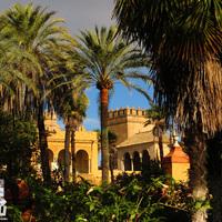 Sevilla és Málaga - Európa téli oázisa
