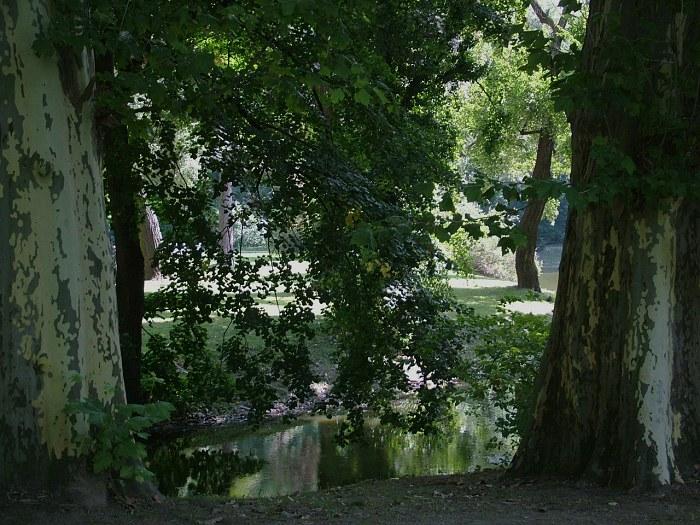 Hlohovec_park568.jpg