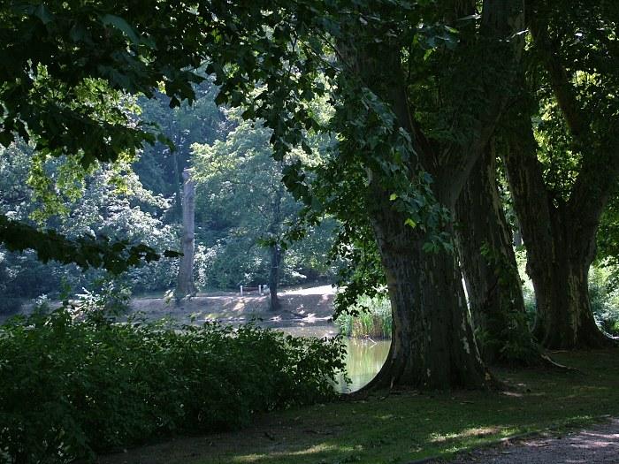 Hlohovec_park575.jpg