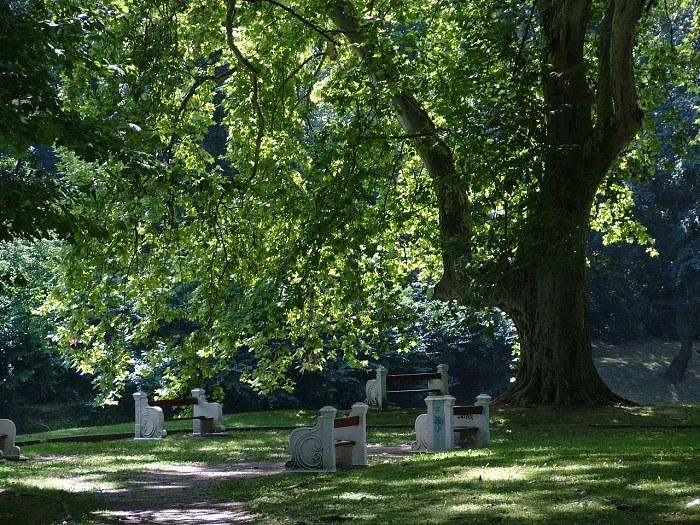 Hlohovec_park584.jpg