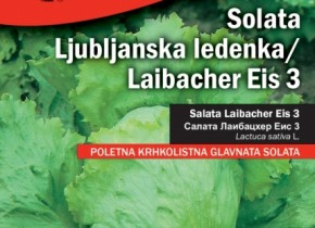 358-solata-laibacher-eis-3-14-290x210.jpg