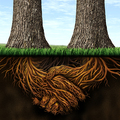 A beismerés egészségben tart-Amikor másokat segítesz a növekedésben, te is növekszel-Az Úr közel!-Bizonytalanul a következő lépésben, de bizonyossággal az Úrban-Életedben minek van a legnagyobb tekintélye?
