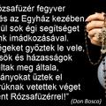 A Rózsafüzér fegyver az egyén és az Egyház kezében. Rendkívül sok égi segítséget kapunk imádkozásával.