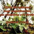 A BIZONYTALANSÁG KEZELÉSE-A jó gondolkodásmód-Engedd el!-HOGYAN MUTATJA MEG ISTEN NEKÜNK AKARATÁT?-Isten akarata számodra-Ma nyisd ki a szemed!