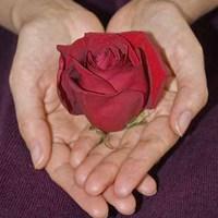 Ellenségszeretet.../Irgalomért.../Nehézségeink.../Szabadság.../Szerelem.../Utolsó ítélet...