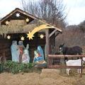 Decemberben élő betlehem várja a Budakeszi Vadasparkba látogatókat, valamint eljön hozzánk a Mikulás is.