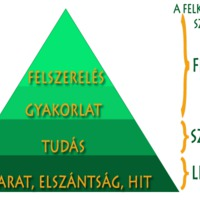 A túlélés alapjai - a túlélés piramisa