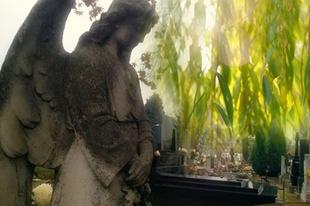 Válóczy Szilvia: Egy Angyal szobor előtt