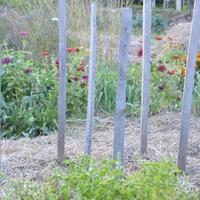A talajtakarás egy meleg takaró a csupasz földre