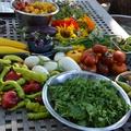 Évszakok a kertben, és a konyhában