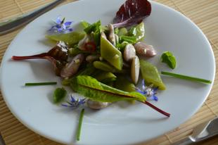Saláta kétféle babból