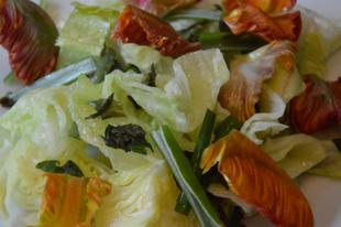 Tulipánvirág saláta