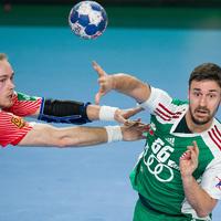 Magyarország - Dánia 25-32 (12-14)