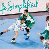 Magyarország - Csehország 27-33 (11-15)