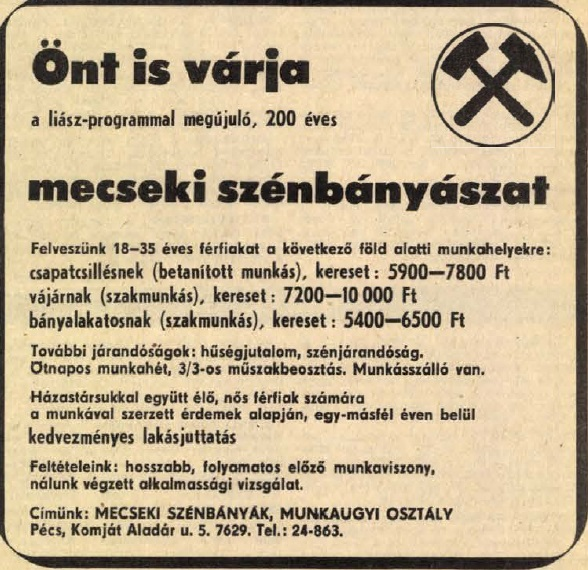 idokapszula_nb_i_1981_82_31_fordulo_allasajanlat.jpg