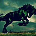 2014 Fa-Ló: Kitartóan vágtató táltos paripa