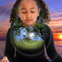 Mi fán terem a Tudatos Teremtés