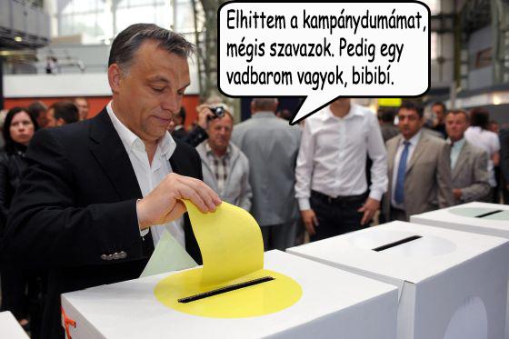 orbán vadbarom.jpg