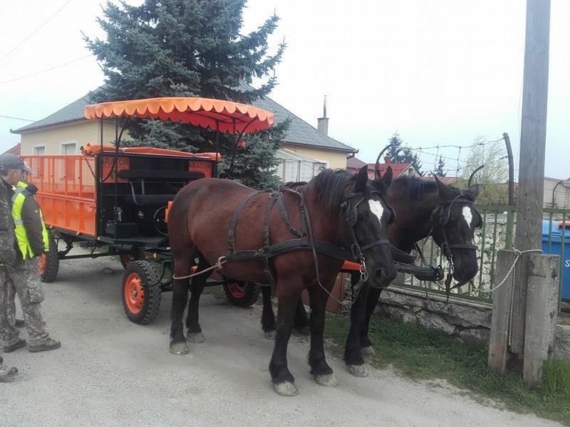 lovashulladekkocsi2.jpg