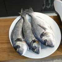 TheBigFish: Végre van jó tengeri halas a belvárosban