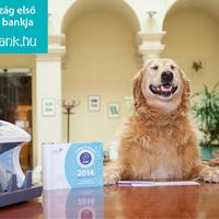 Ha még nem jártál a MagNet Bank weboldalán, tutira meglepődsz