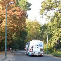 Elektromos busz jár a Margit-szigeten