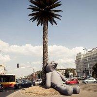 Gigantikus plüssmackó költözött Varsó utcáira