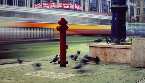 Urban Flow (900).JPG