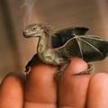 Az új magyar mesehős: Sokasara sárkány