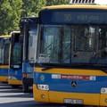 Egy kommentből tudta meg a pécsi vezetés, hogy eladták a buszparkját