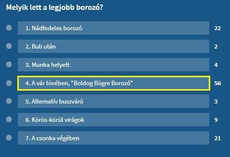 borozo_szavazas.jpg