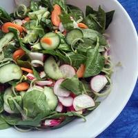 Tavaszköszöntő saláta